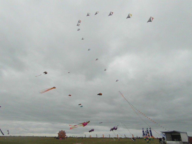 La fête du vent à Penvins (Sarzeau) Sam_3712