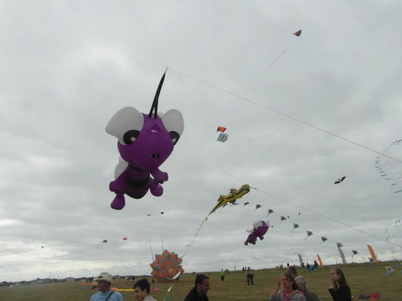 La fête du vent à Penvins (Sarzeau) Sam_3715
