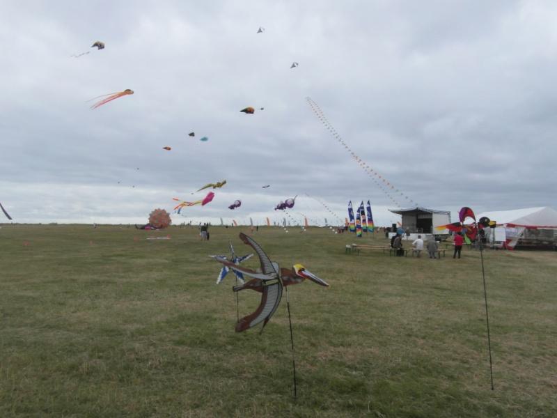 La fête du vent à Penvins (Sarzeau) Sam_3718