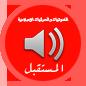 الصوتيات والمرئيات الإسلامية