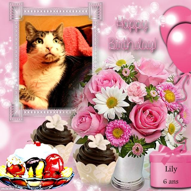 Bon anniversaire à notre petite Lily chérie 1sxw9-23