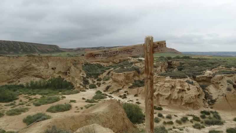 Un petit tour en Espagne du côté de Pampelune Dsc03615