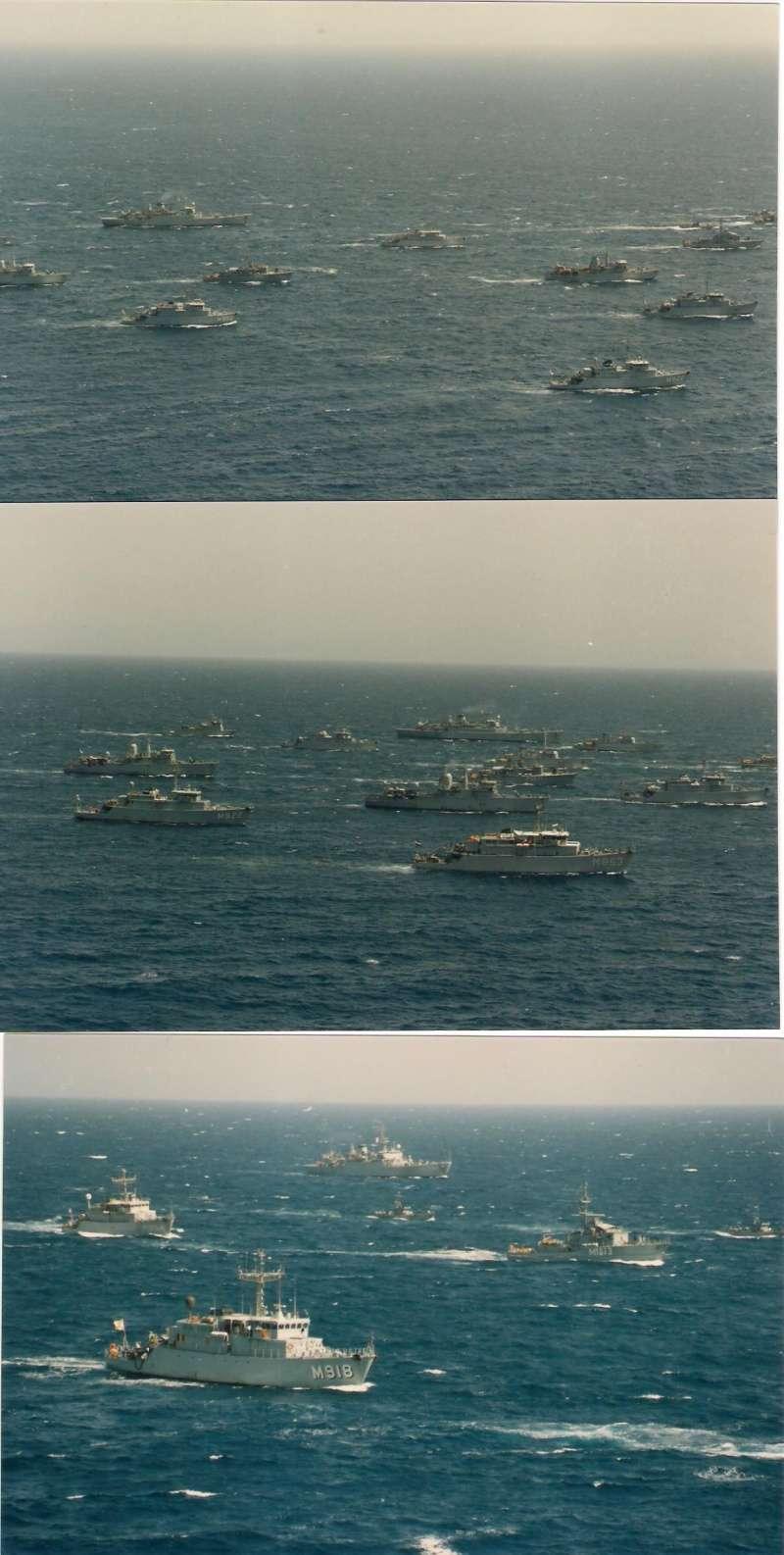 A961 Zinnia - Operation SOUTHERN BREEZE - Page 4 F310