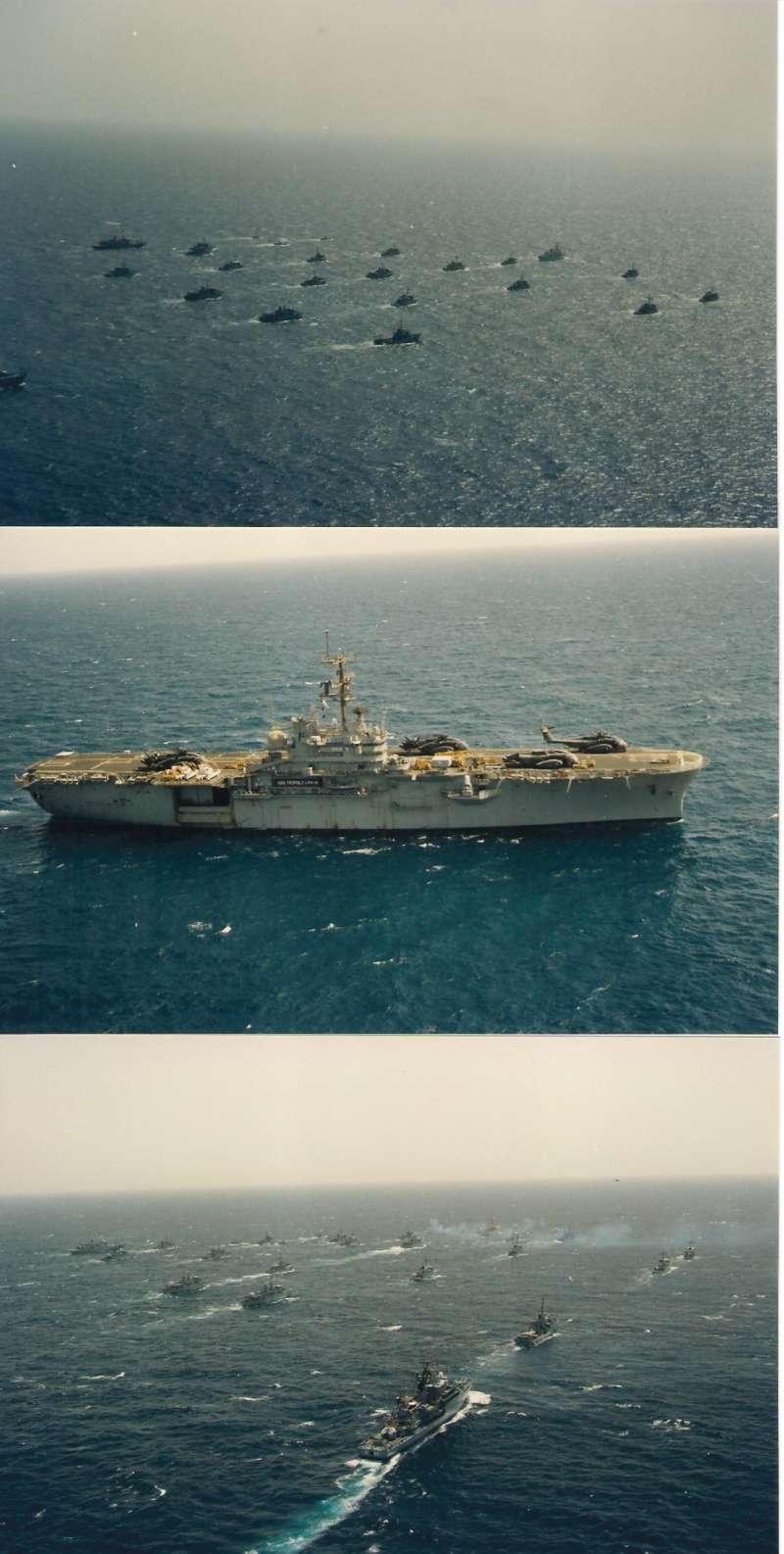 A961 Zinnia - Operation SOUTHERN BREEZE - Page 4 F610