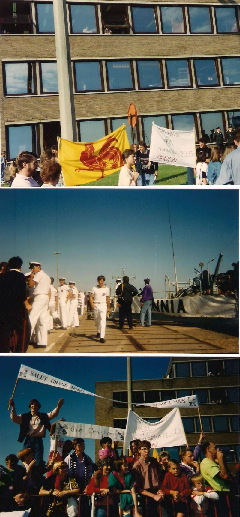 A961 Zinnia - Operation SOUTHERN BREEZE - Page 7 Image_14