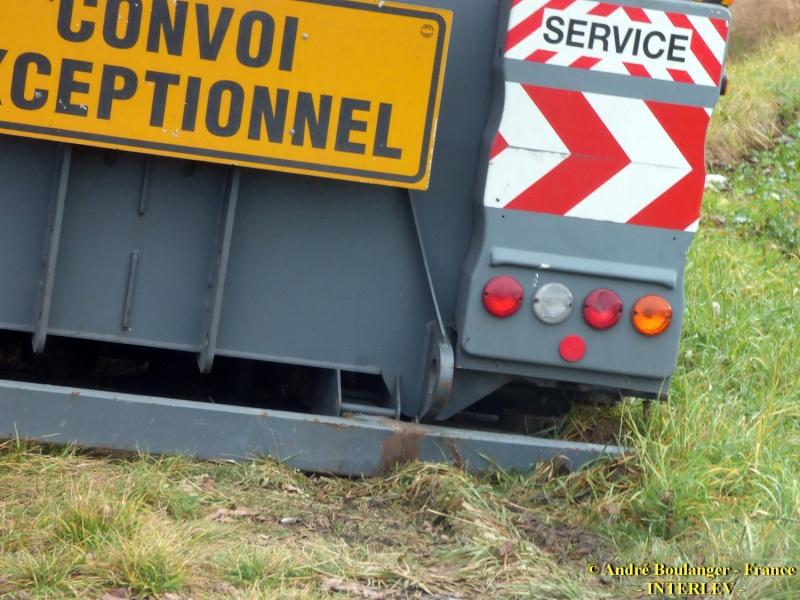 Les grues de CICERON (France) P1050813