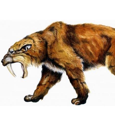 Demande d'ajout de monstres dans le bestiaire - Page 3 12_smi11
