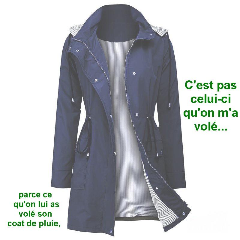 LES TABLEAUX DE LAUREL    17416310