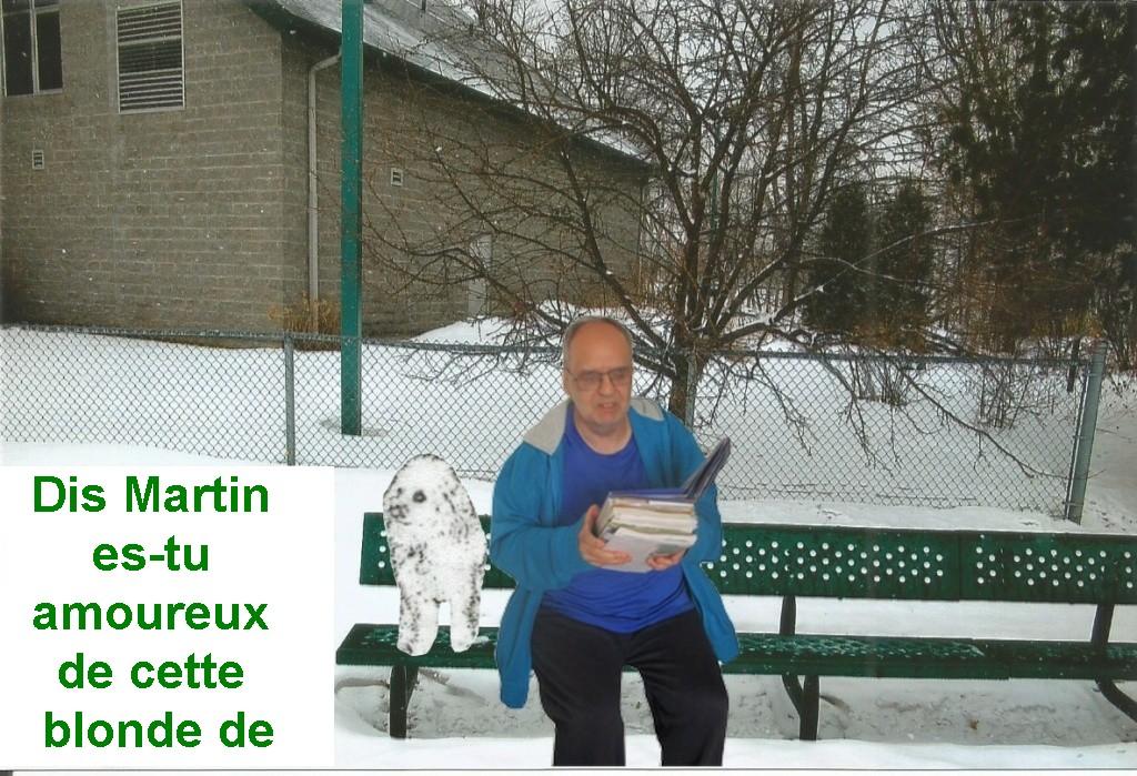 LES TABLEAUX DE LAUREL    Img-2913