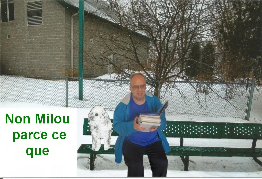 LES TABLEAUX DE LAUREL    Img-2914