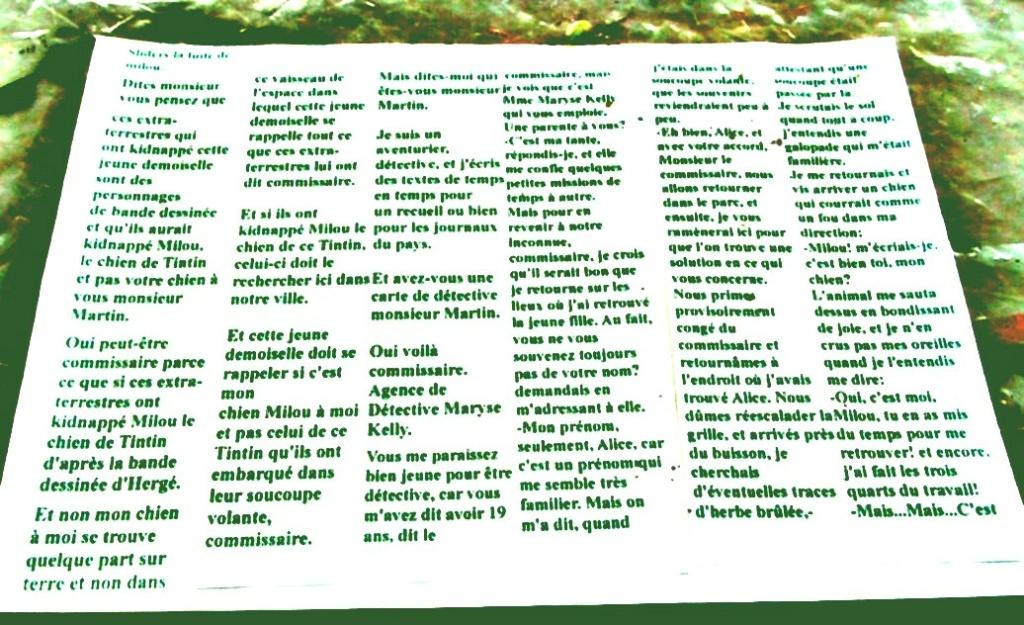 Les tableaux de Laurel - Page 2 Sans_t66