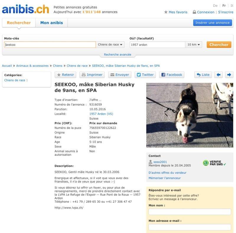SEEKOO, Husky (m), né le 30.03.2006  REFU Suisse  - Page 2 Seekoo11
