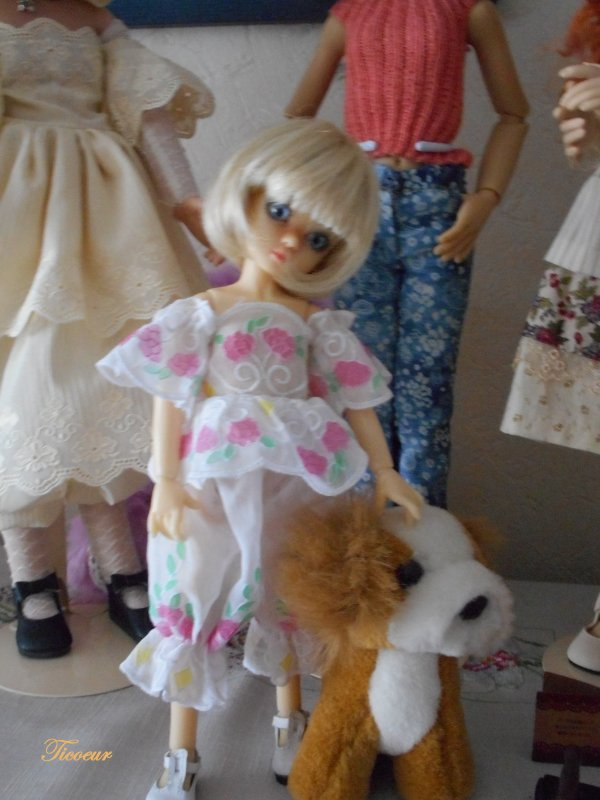 Zoya mon tit bouchon (Millie) a une nopuvelle tenue le 23-12  Dscn1580