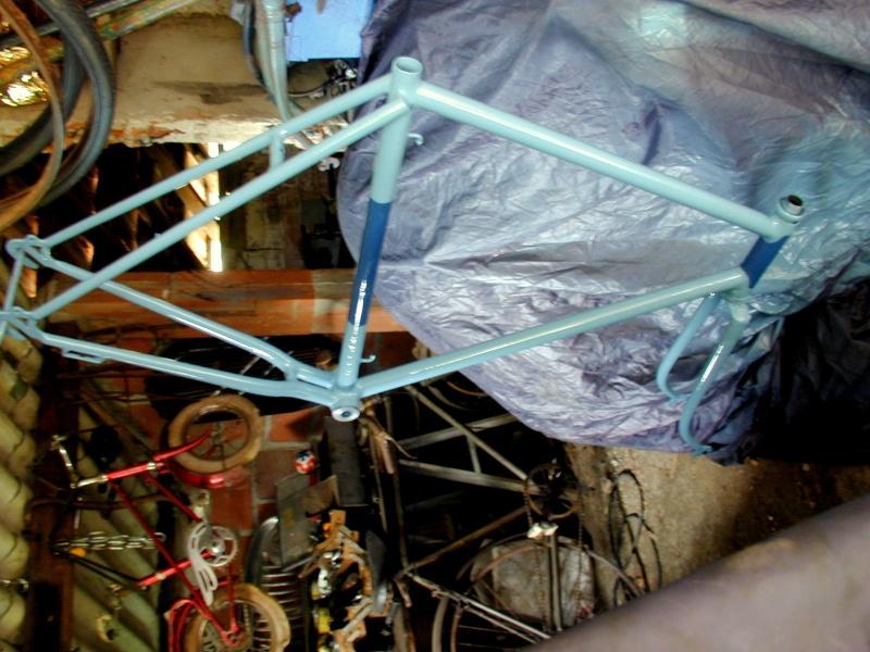 L'Alcyon modèle course  de mon grand père Alcyon10