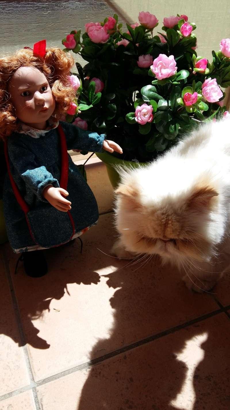 MARIE-CHARLOTTE et ANNE-SOPHIE  découvre arrivée chez elles Zwergn14