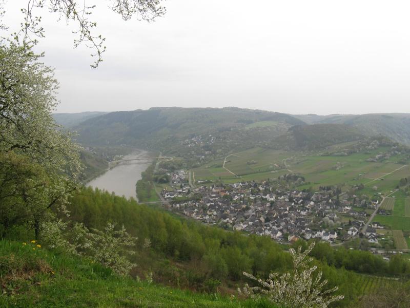 avril 2016: de la Moselle au Rhin  - Page 9 Img_9413