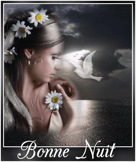 bonzour bonne zournée et bonne nuit notre ti nid za nous 015e5510