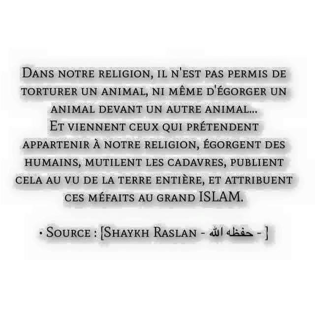 tuer au nom de l'islam (cheikh raslan) 12274710