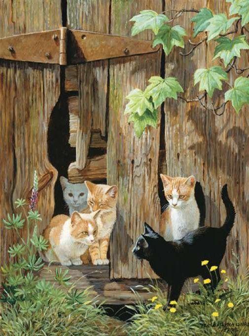 Les chats - Page 2 0aa7e910
