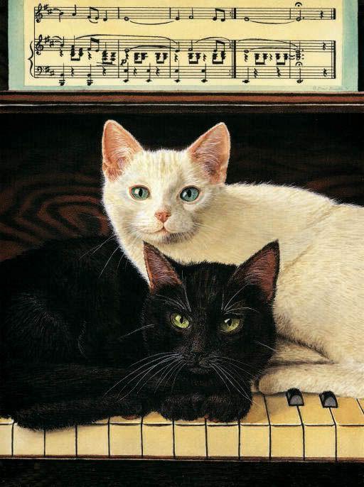 Les chats - Page 40 260cc110