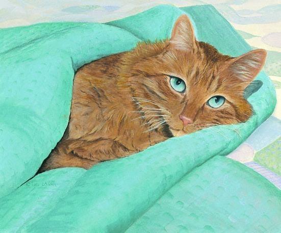 Les chats - Page 2 4a5d7d10