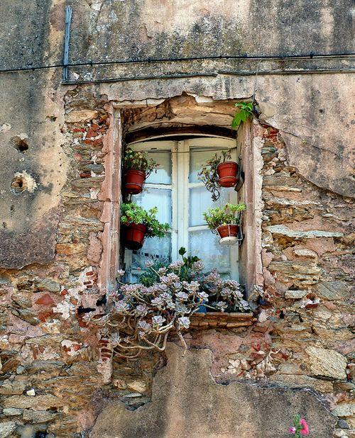 Des fenêtres d'hier et d'aujourd'hui. - Page 39 75d8c710