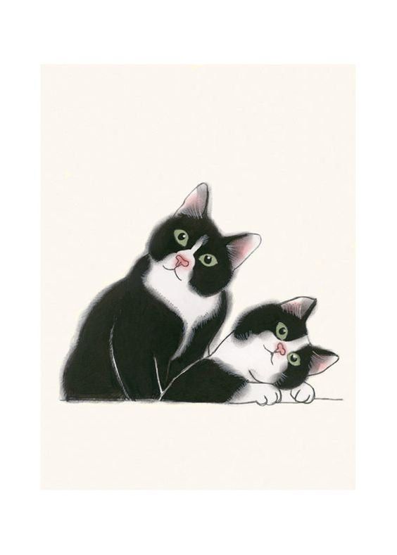 Les chats - Page 3 9ea7bf10