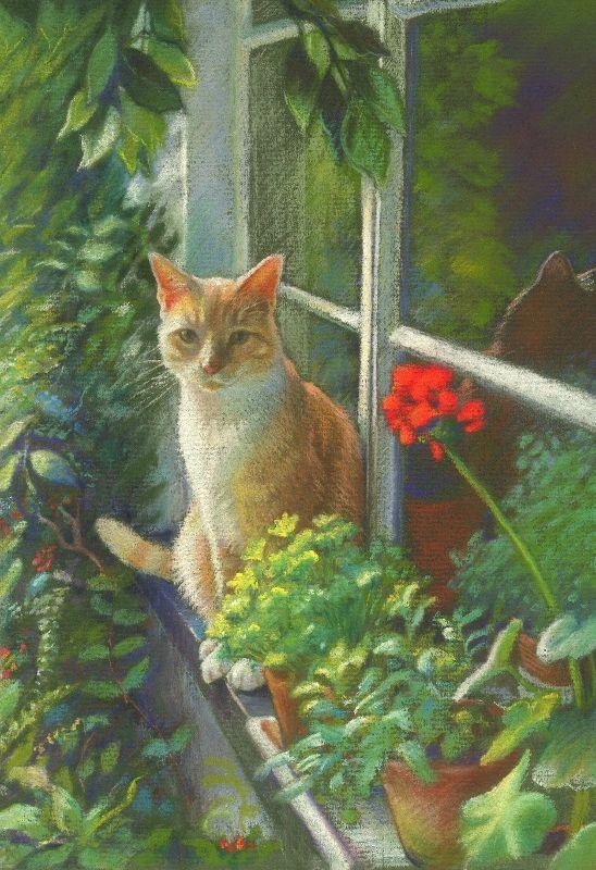 Les chats A4d82910
