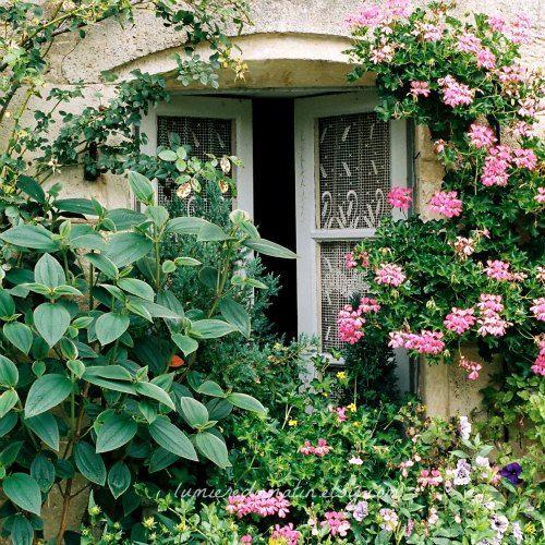 Des fenêtres d'hier et d'aujourd'hui. - Page 39 D4eb0e10
