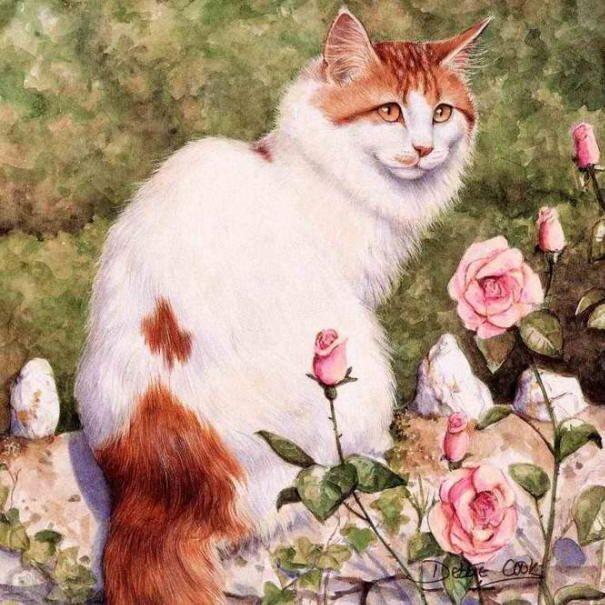 Les chats - Page 38 Debbie10