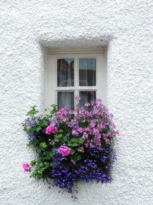 Des fenêtres d'hier et d'aujourd'hui. - Page 38 Fen_1610