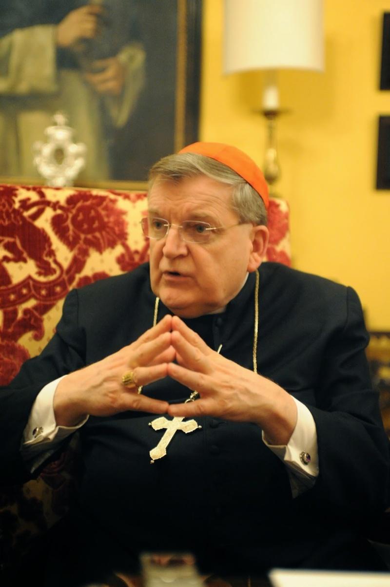 EXCLUSIF : Un entretien inédit avec le Cardinal Burke à propos de la Famille, du Mariage et du Synod Dsc_0613