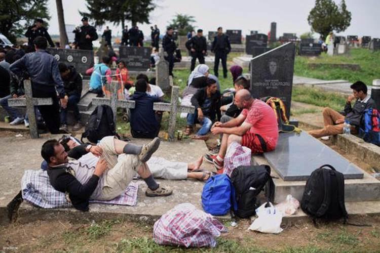 Pique-nique musulman dans un cimetière catholique ! Unname10
