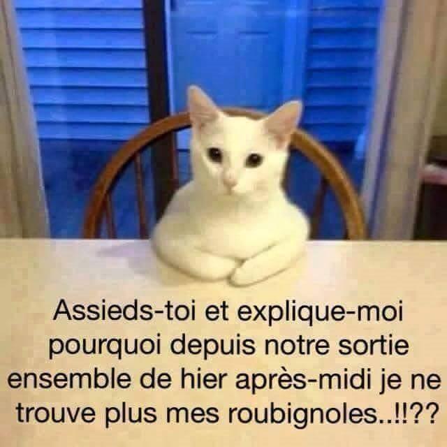 une petite blague :) - Page 17 Fb_20110