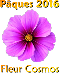 Pâques 2016 - La Résurrection (partie 2) Fleur_10