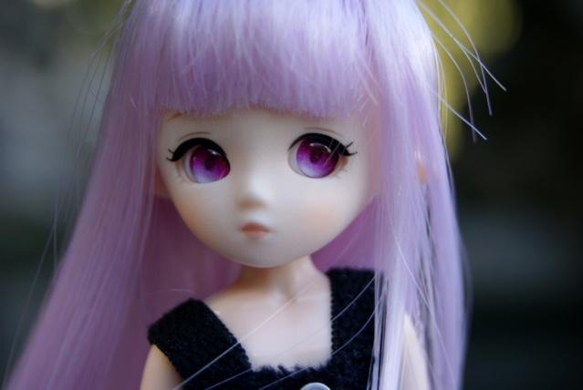 [tiny dolls] ~ Violine, Lilas & Moka ~ Dsc00117