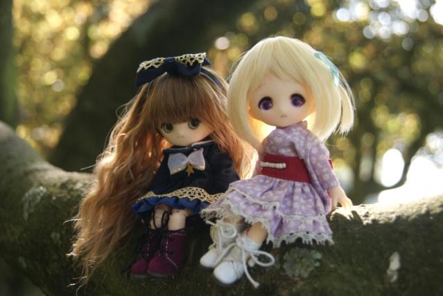 [tiny dolls] ~ Violine, Lilas & Moka ~ Dsc00520