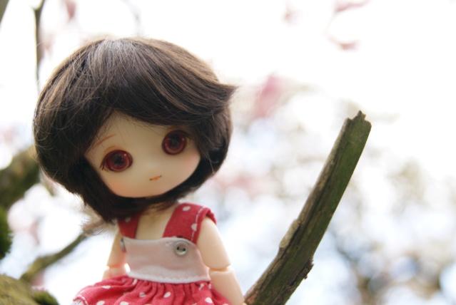 [tiny dolls] ~ Violine, Lilas & Moka ~ Dsc09012