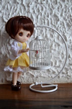 Nos Dolls et Leurs compagnons animaux (dollesques) Dsc_0024