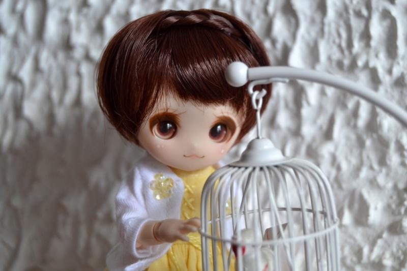 [tiny dolls] ~ Violine, Lilas & Moka ~ Dsc_0026