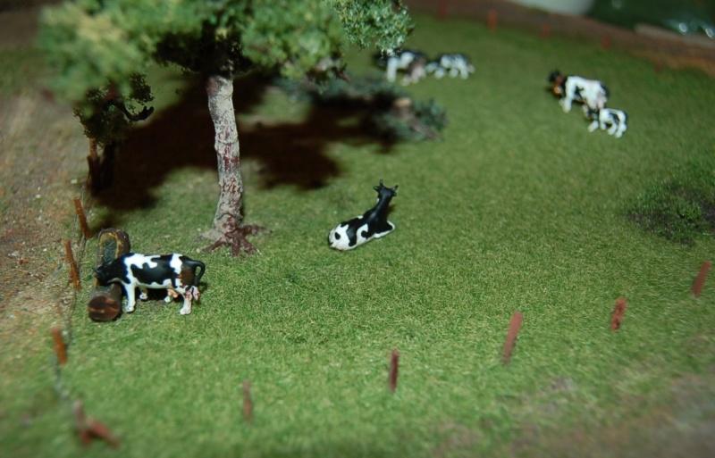 La ferme isolée et son pré à vaches en HO - Page 2 Dsc_8216