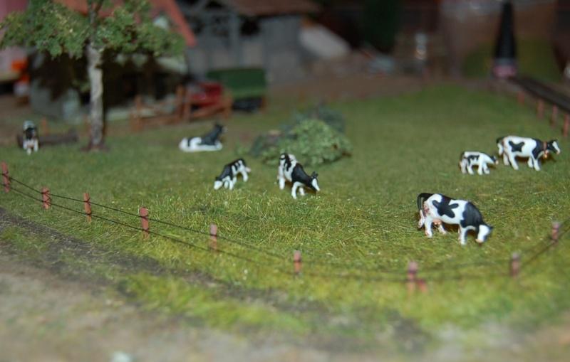 La ferme isolée et son pré à vaches en HO - Page 2 Dsc_8310