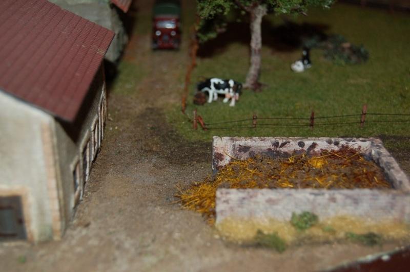 La ferme isolée et son pré à vaches en HO - Page 2 Dsc_8311