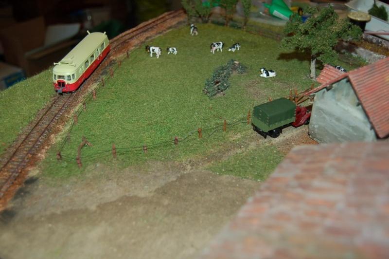 La ferme isolée et son pré à vaches en HO - Page 2 Dsc_8315