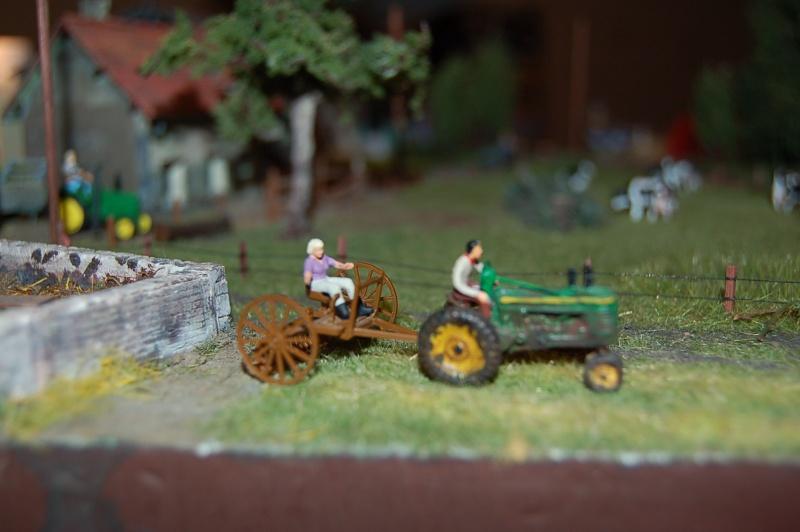 La ferme isolée et son pré à vaches en HO - Page 2 Dsc_8529