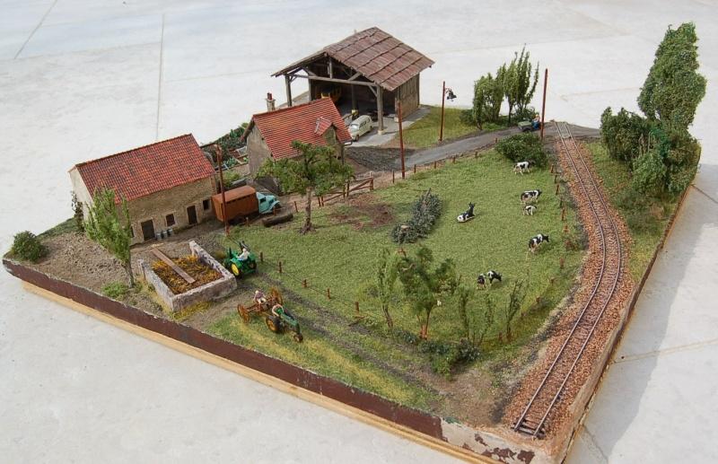 La ferme isolée et son pré à vaches en HO - Page 3 Dsc_8531