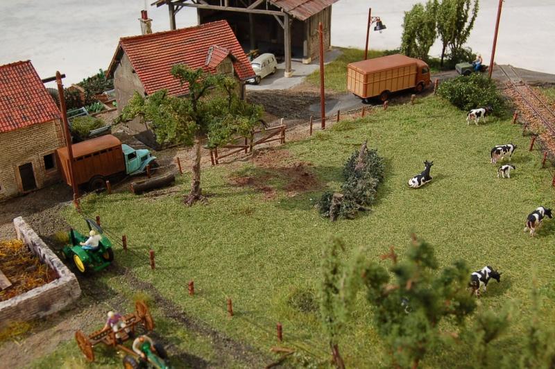 La ferme isolée et son pré à vaches en HO - Page 3 Dsc_8532