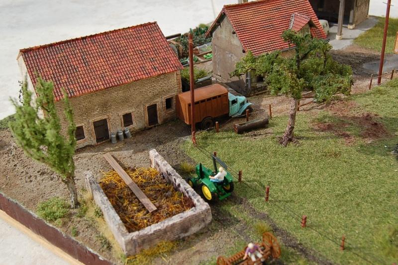 La ferme isolée et son pré à vaches en HO - Page 3 Dsc_8533