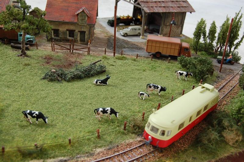 La ferme isolée et son pré à vaches en HO - Page 3 Dsc_8534