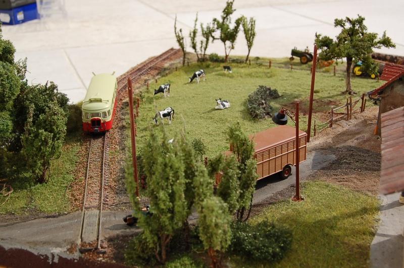 La ferme isolée et son pré à vaches en HO - Page 3 Dsc_8537